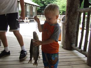 Trout streams retreat to the mountains for Ga fishing license for senior citizens