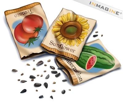 Seeds Clipart Seed Packet Clipart